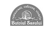Butoiul Sasului